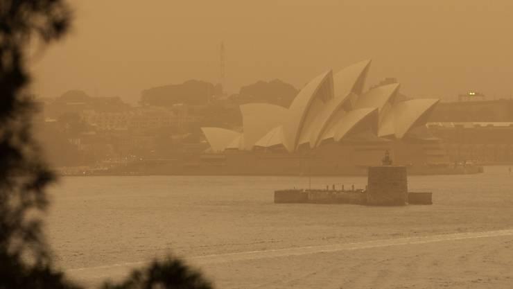Der Rauch der anhaltenden Buschfeuer in Australien hat zu hohen Schadstoffkonzentrationen in der Luft geführt. In Sydney klagten Menschen über Atembeschwerden. (Archivbild)