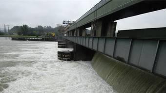 Im Rahmen der Neukonzessionierung des Kraftwerks Klingnau waren verschiedene Massnahmen zur Aufwertung der Umwelt im und rund um den Klingnauer Stausee vorgesehen.