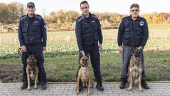 Das sind die Gewinner der Polizeihundeprüfung