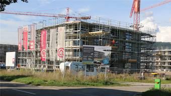 In Stein im Gebiet Neumatt wird derzeit eine Überbauung mit 112 Wohnungen gebaut.