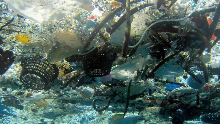 In den Weltmeeren schwimmt viel Plastikmüll, hier etwa vor Hawaii. (Symbolbild)