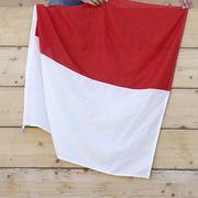 Die Solothurner Fahne darf natürlich nicht fehlen