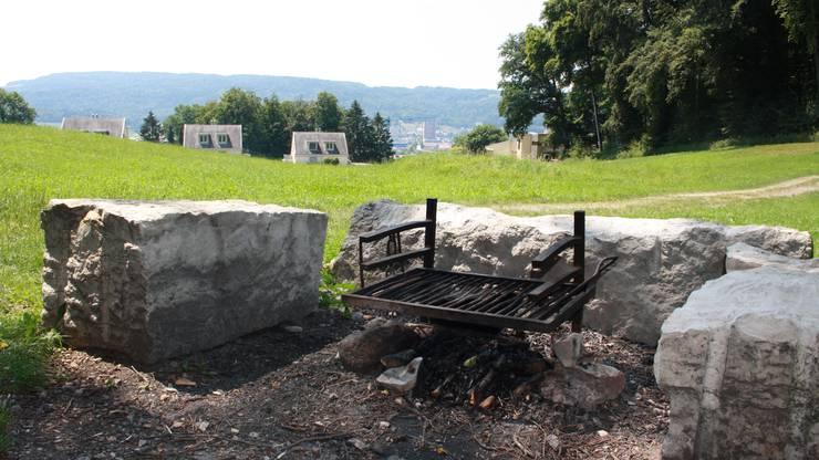 Die Grillstelle in der Erlen oberhalb von Oetwil am Waldrand.