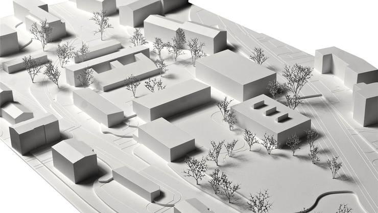 Das Schulgelände im Modell: Der Pavillon ist das Gebäude mit den drei Aufsätzen rechts im Vordergrund. Daran vorbei läuft die Steinmürlistrasse. Modell: AGPS Architecture ltd.