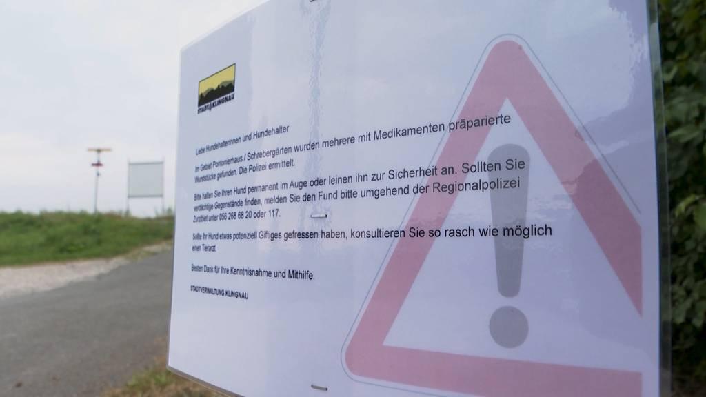 Achtung Giftköder: Wurststücke mit Medikamenten beunruhigen Klingnauer Hündeler