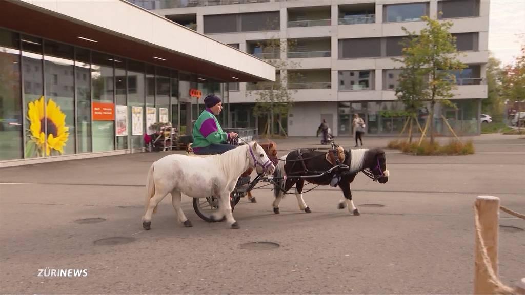 Mit Ponys und Kutsche zum Einkaufen