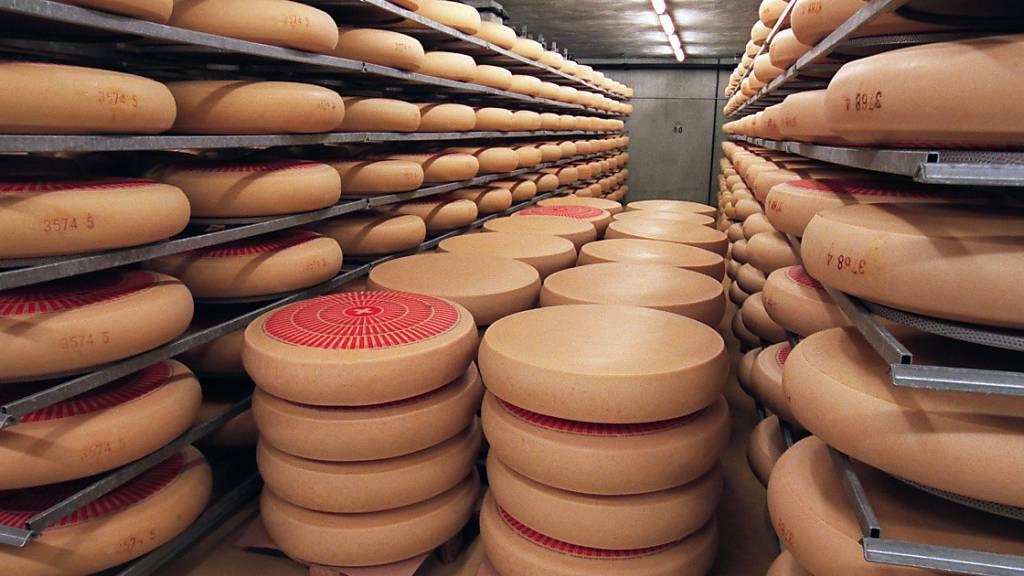 Käseproduzent zu fünf Jahren Haft verurteilt