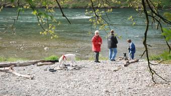 Auenschutzpark Rupperswil/Auenstein