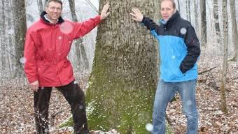 Die Brüder Kurt (links) und Urs Steck verbindet die Liebe zur Natur und zum Wald – sie wurde ihnen in die Wiege gelegt.