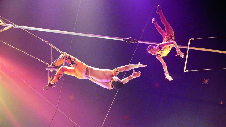 Die Auffangeinrichtung der beruflichen Vorsorge wurde vor allem gegründet, um beispielsweise Zirkusartisten aufzunehmen, die schwer versicherbar sind.