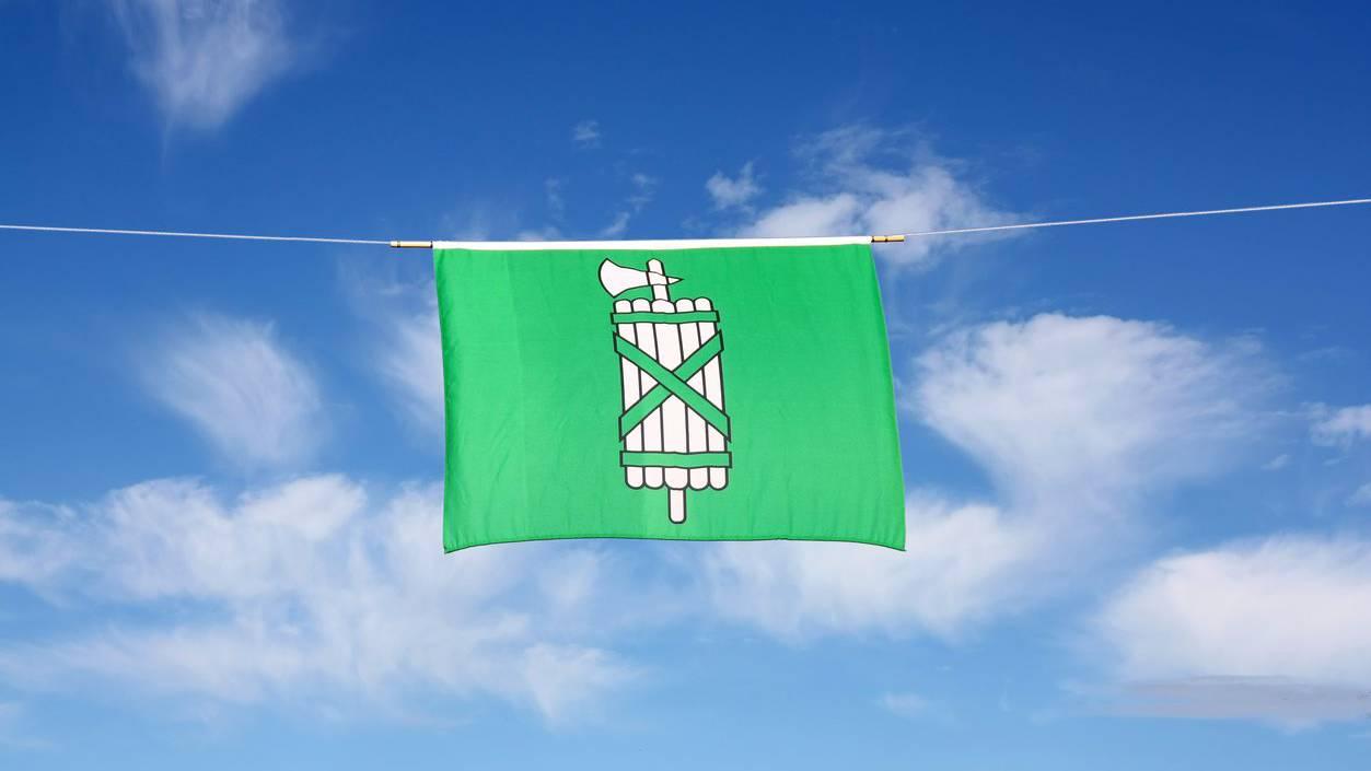 So sah das St.Galler Wappen früher einmal aus.