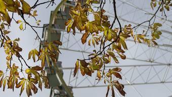 Und wieder dreht sich in Basel das Riesenrad: Am Samstag hat am Rheinknie die 546. Herbstmesse begonnen.