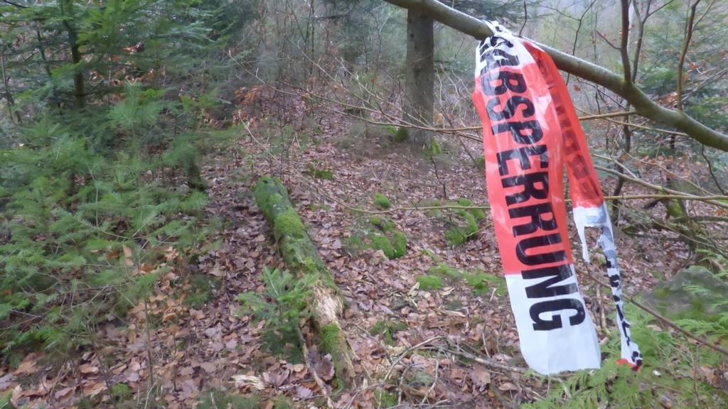 Der gefundene Schädel gehört nicht der vermissten Aargauerin