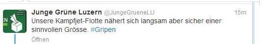 Auch die jungen Grünen Luzern hauten drauf