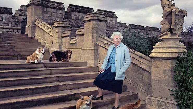 Seit 67 Jahren sitzt Königin Elizabeth II in Grossbritannien auf dem Thron. Das Bild zeigt sie auf Schloss Windsor gemeinsam mit ihren Hunden Willow, Vulcan, Candy und Holly.