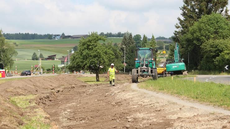 Die Bauarbeiten an der Seengerstrasse sind bereits in vollem Gang.
