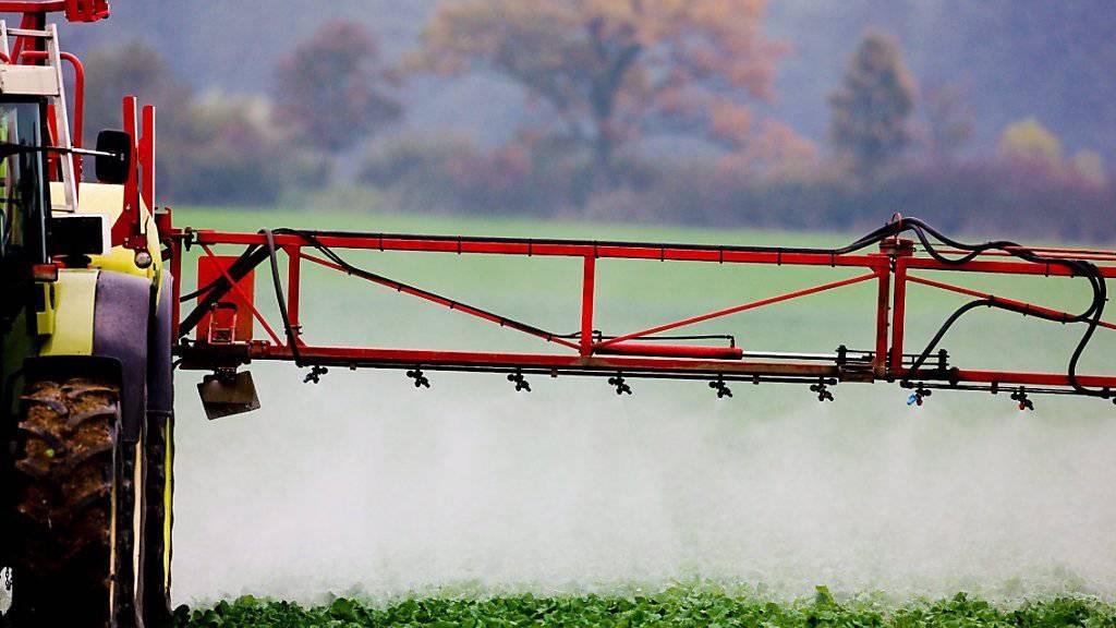 Die gefälschten Pestizide können grossen Schaden anrichten, wie Europol warnt (Archiv)