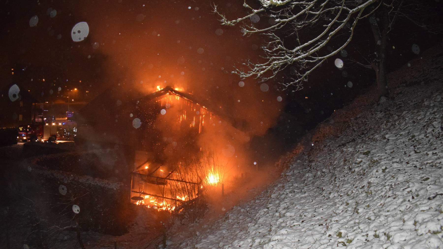 Kriens: Brand zerstört Treibhaus