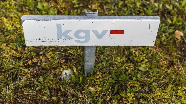 21 Kandidierende erfüllen die vom KGV definierten Voraussetzungen für eine Unterstützung nicht.