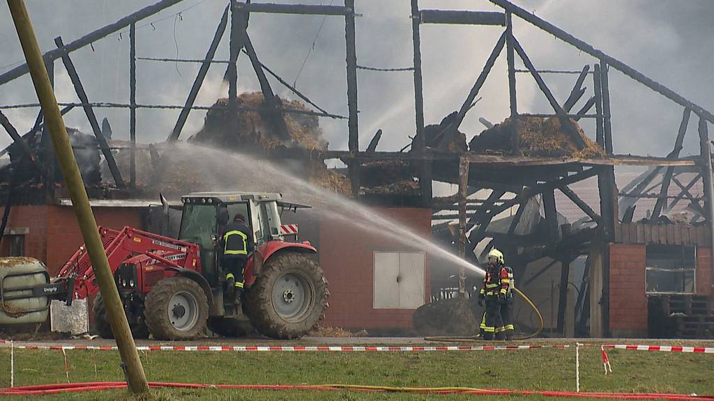 Willisau (LU): Scheune steht in Vollbrand