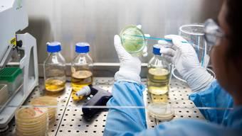 Forschung und Innovation sollen in der Schweiz auch künftig viele Mittel erhalten.