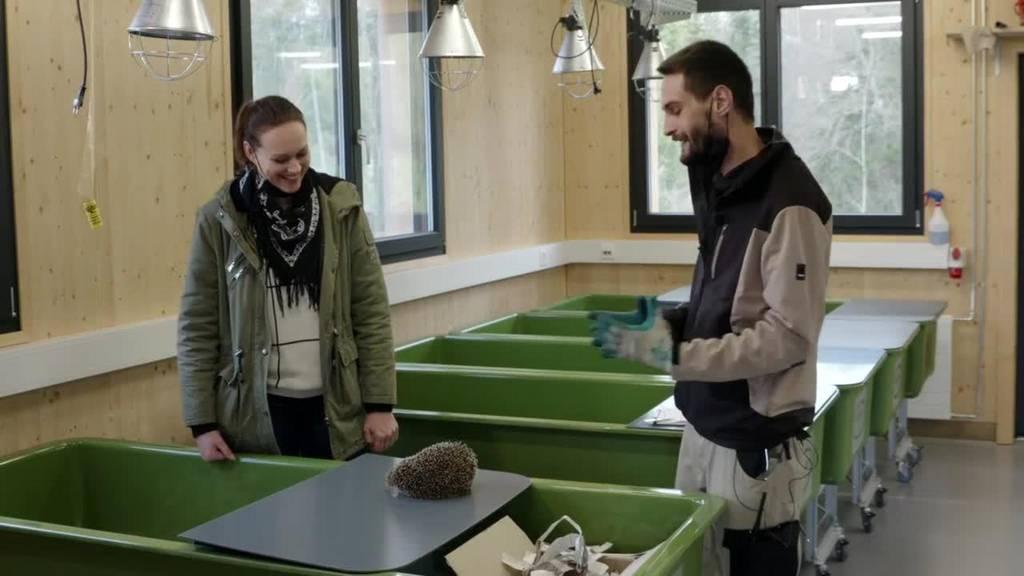 Biodiversität Walter Zoo / Fliegengitter / Gärten der Gartenvilla