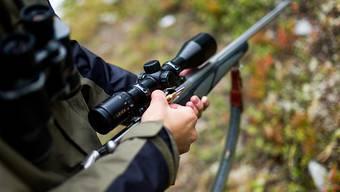 Der 56-jährige deutsche Jäger wollte Wildtiere vor der Ernte aus einem Feld treiben, als er erschossen wurde. (Symbolbild)