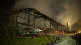 Beim Brand auf einem Bauernhof in Seuzach (ZH) entstand am Donnerstagabend ein Riesenschaden. Menschen und Tiere blieben unverletzt.