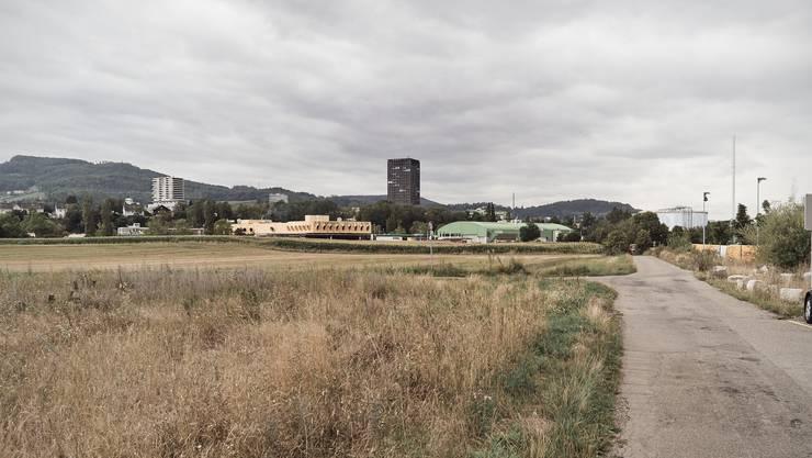 Auf diesen Feldern soll das neue Spital entstehen, den Fressbalken im Blick.