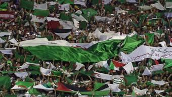 Algerien wird neu von Fussball-Idol Madjer betreut