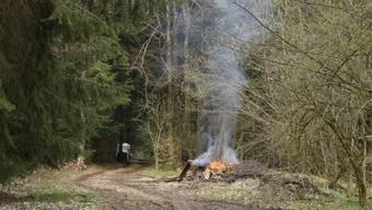 Gebrauchsholz und Waldholzabfälle lassen die Flammen auflodern.