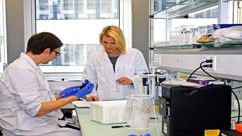 Das Institut für medizinische Genetik der Universität Zürich ist kürzlich in den Schlieremer Bio-Technopark gezogen. ZVG