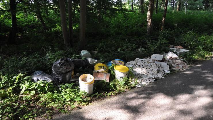 Unbekannte haben zwischen Donnerstagabend und Montagmorgen eine grössere Menge Abfall in einem Waldstück in Gunzgen illegal entsorgt.