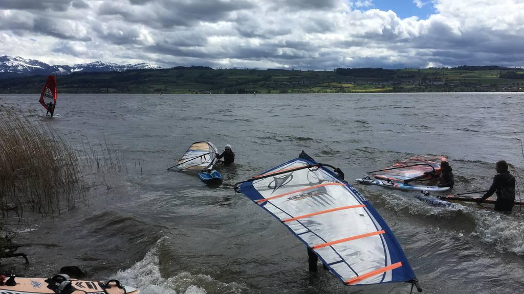 Traumwetter für Windsurfer