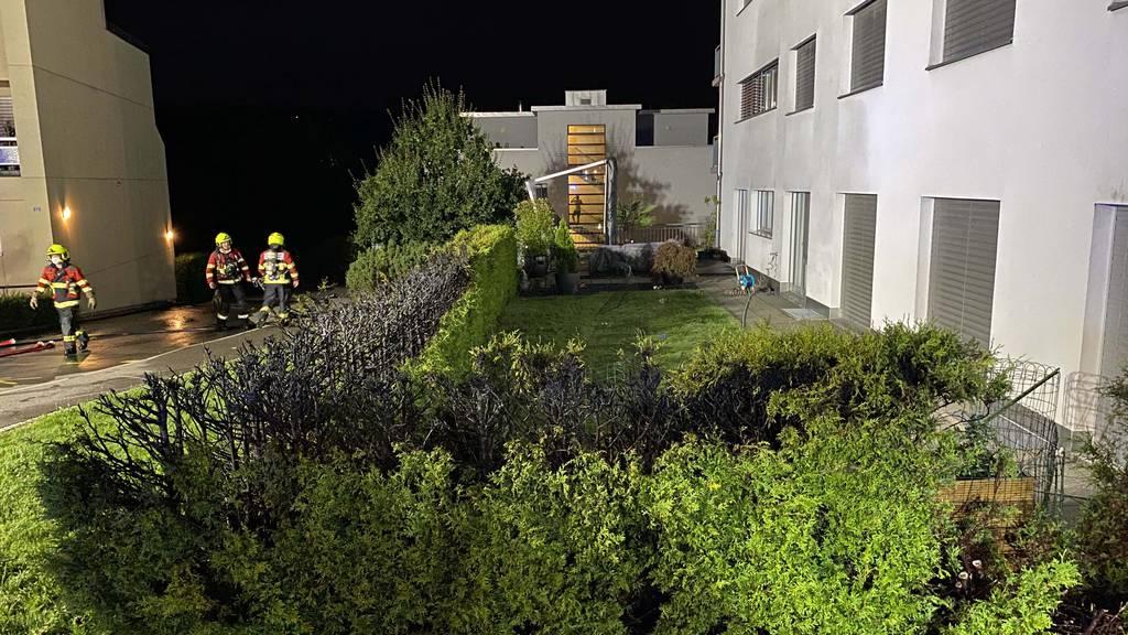 Rakete setzt Hecke in Menzingen in Brand