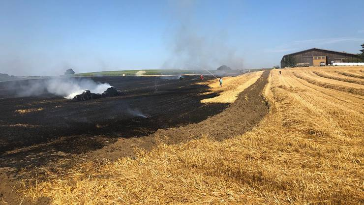 Über eine Hektare Ackerfläche fiel den Flammen zum Opfer.