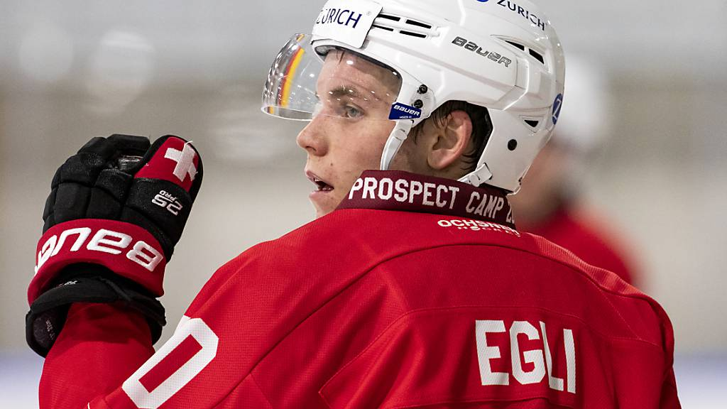 Fünf neue Spieler für den HC Davos
