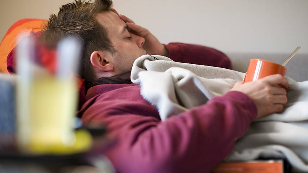 Spezielle Gruppe von Immunzellen verlängern Grippeviren-Abwehr