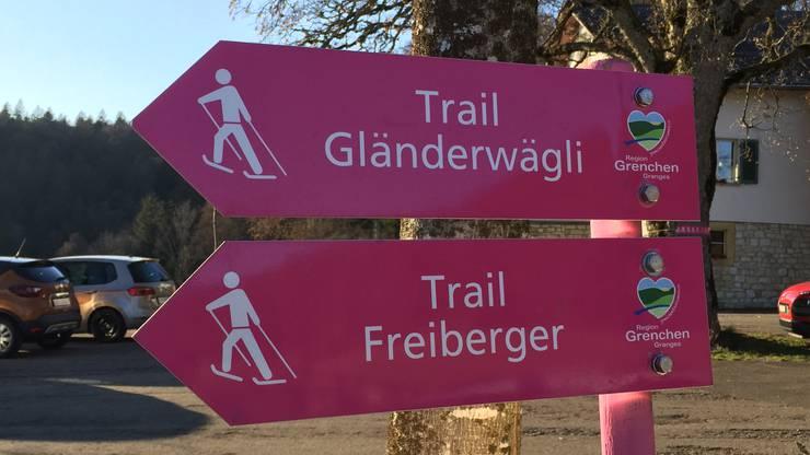 Die verschiedenen pinken Wegweiser auf dem Stierenberg.