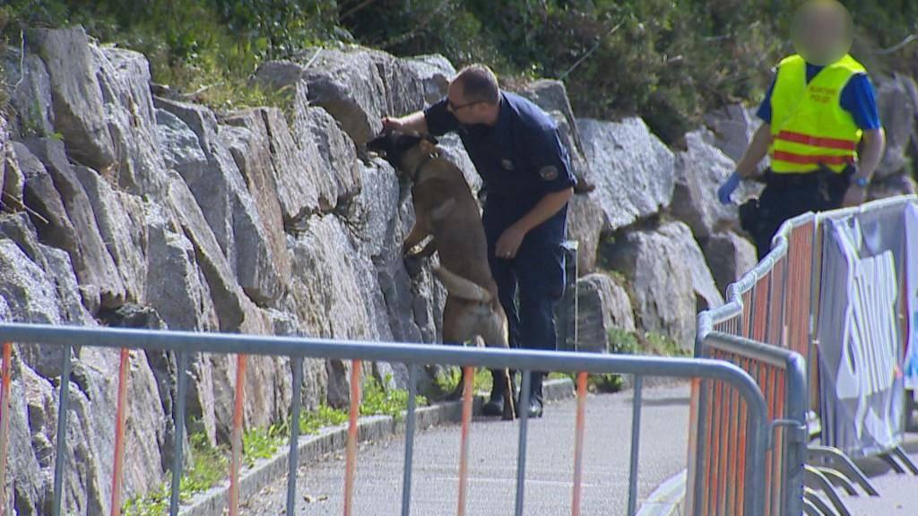 Nach der Bombendrohung suchten Polizeihunde das Startgelände ab. (© BRK News)