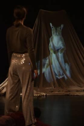 Hiphop ist anscheinend ein Bindeglied zwischen den Menschen und dem Tierreich – zumindest wenn die Verbindungen und Gegenüberstellungen von Choreografin Béatrice Goetz inszeniert sind.
