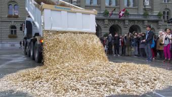 Lastwagen kippt 15 Tonnen Fünfräppler auf den Bundesplatz (Archiv)