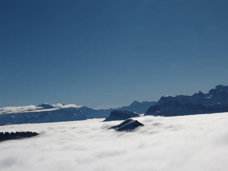 Nebelmeer von Rigi Kulm aus