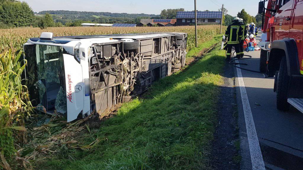 Der volle Bus kam von der Strasse ab und kam auf der Seite ligend in einem Maisfeld zum Stillstand. Die Unfallursache ist noch nicht geklärt.