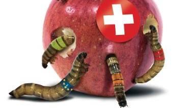 Das Wurm-Plakat für den Wahlkampf 2019.