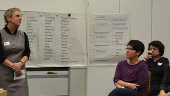 Katharina Jaquet, Co-Präsidentin, erklärt die Projekte der Integrationskommission. IHK