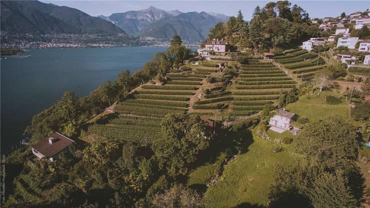 Die Cantina della Rocca in Vairano ist ein kleines Paradies.