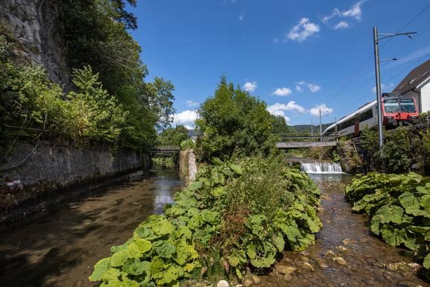Verursachte die Dünnern-Korrektur vor Balsthal Der Augstbach ist der wichtigste Zufluss der Dünnern.