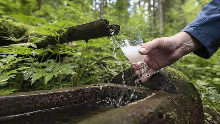 Kräuter, ein Geheimrezept und Quellwasser ergeben eine milchigweisse Flüssigkeit: den Absinth. (Archivbild)