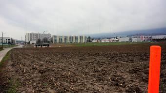 Die ausgesteckte Überbauung Hofgarten in Bellach Ost wurde im Gemeinderat behandelt.